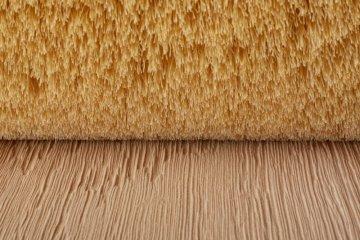 Planke bevor Abstauben - Cosma Oberflächentechnik